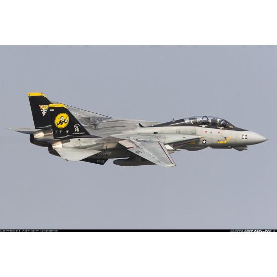 Skymaster Large F-14