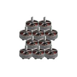 10x Superleggera 2305.5 Motor aMAXinno T-Bell